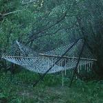 Hammock by the creek