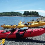 Acadia Park Kayak Tours