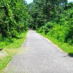 Taconic State Park Campgrounds Foto