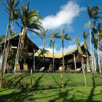 Photo of Treehouse Hostel Mission Beach