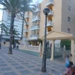Bilde fra Palm Court Apartments