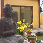 Buddha in the garden