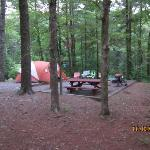 a small RV/ tent camp site