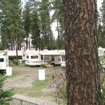 Ponderosa Falls RV Resort