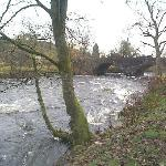  Fast flowing River Leny