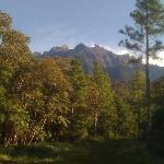  View of Mt. Kinabalu from end of driveway