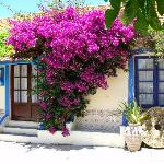 Bougainvillea Apartment