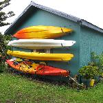 Free (and very colourful) kayaks to use