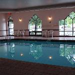 indoor swimming pool at Indian Trail Motel