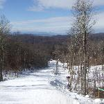 Foto de Scenic Wolf Mountain Resort