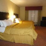 Comfort Suites San Antonio NW Near Six Flags Foto