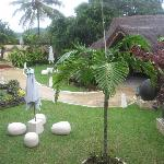 Photo de Coconut Palms Resort