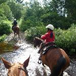 Horseback Riding in the woods by the Inn