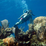 Andros Diving