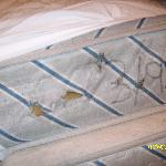  the bed from 1995