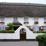 ‪The Thatch‬