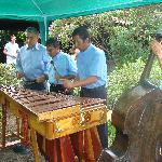 Live Marimba group in Jardin de Celeste