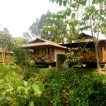 Maylyn Guest House
