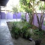 The Purple House International Backpackers Hostel resmi