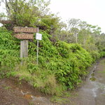 Kamakou Preserve