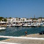 View of Marina from snack bar area