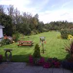 Foto de The Birches Bed and Breakfast