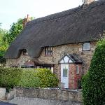 Thatch-roofed home galore