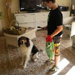  Alex and the hotel dog Tchaki