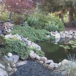 Favorite spot, fish pond