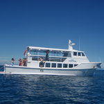 Oolala Day Cruise To Savala Island