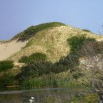 Sand dunes in North Truro