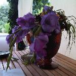 flowers on breakfast table