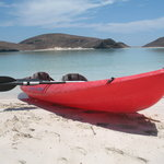 Kayak in Baja Bay