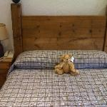 Big Bed with Bear