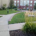 Foto de Staybridge Suites O'Fallon Chesterfield