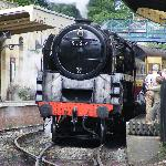  Pickering Station