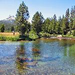Tuolumne Meadows Campground resmi