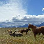 The Rugged Wild West at Deer Valley Ranch Colorado
