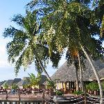 Vilu Reef Beach &amp; Spa Resort