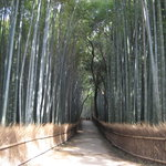 Arashiyama