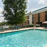 Φωτογραφία: Pear Tree Inn Fenton - St Louis