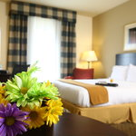 Holiday Inn Express Atlanta-Emory University Area Decatur