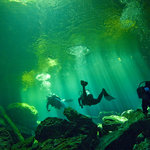 The light from a cenote