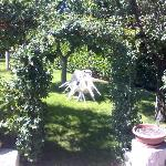  dettaglio nel giardino del B&amp;B Laura