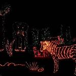  Christmas decoration - there are many things to see during hte Illumination Celebration