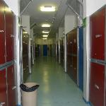  the corridor with the lockers and the doors to the rooms