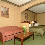  2 Queen Suites with extra sleeper sofa fit all families!