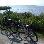 Biking around the island is one of our favorite's.
