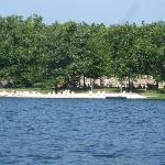 Beach area with swim platform, canoe's and kayaks for guests use.