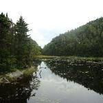 Spruce Lake up in Sutton Mountains nature area (dogs on leashes permitted)